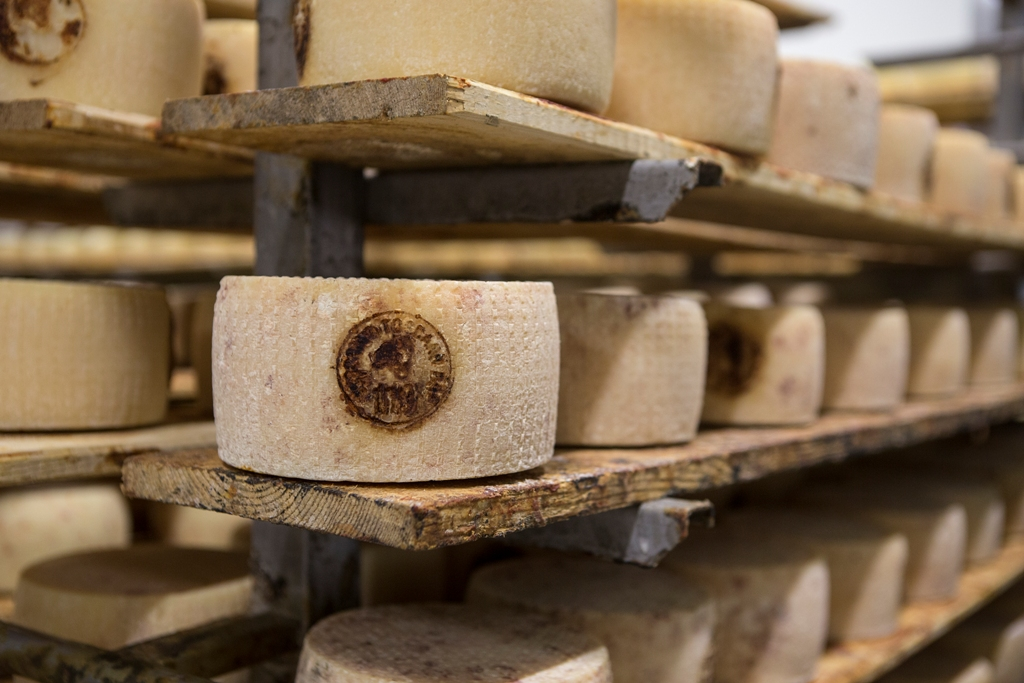 MADE IN ITALY, PECORINO TOSCANO DOP AD ANUGA 2017